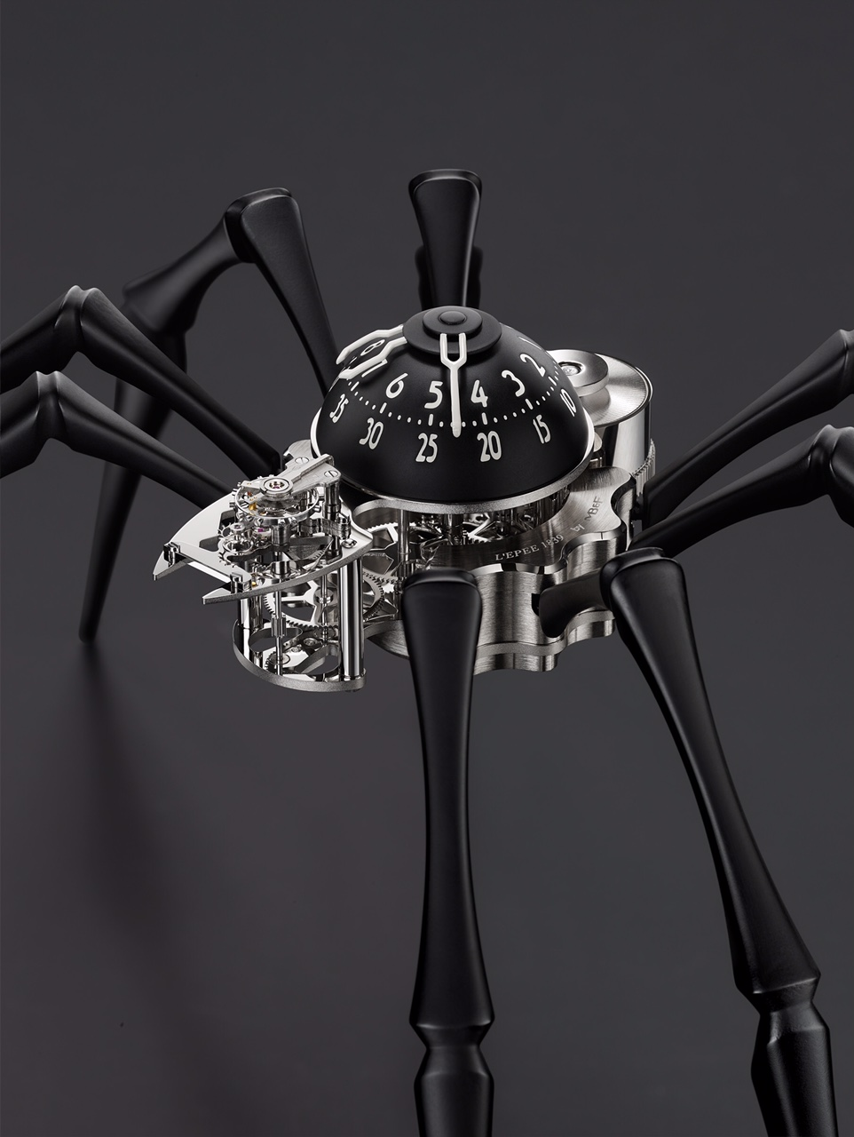 Arachnophobia_Black_CloseUp_Lres_RGB